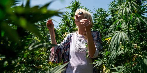 Au Maroc, les routes touristiques du cannabis - La Libre