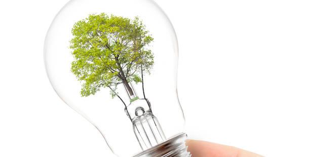 Toute la vérité sur l'électricité verte - La Libre