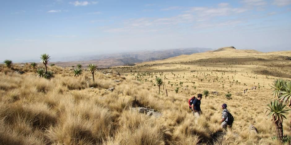 4 raisons de découvrir l'Éthiopie, le pays où les anges vivent dans les arbres